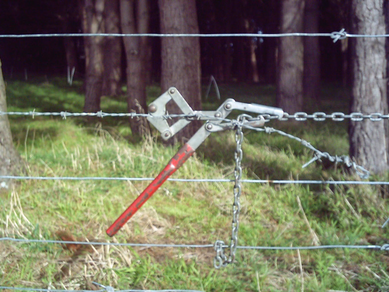 ON THE GRAPEVINE: Fencing
