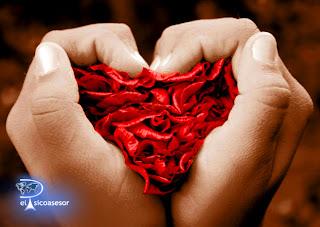 amor-amistad-rosa-corazon