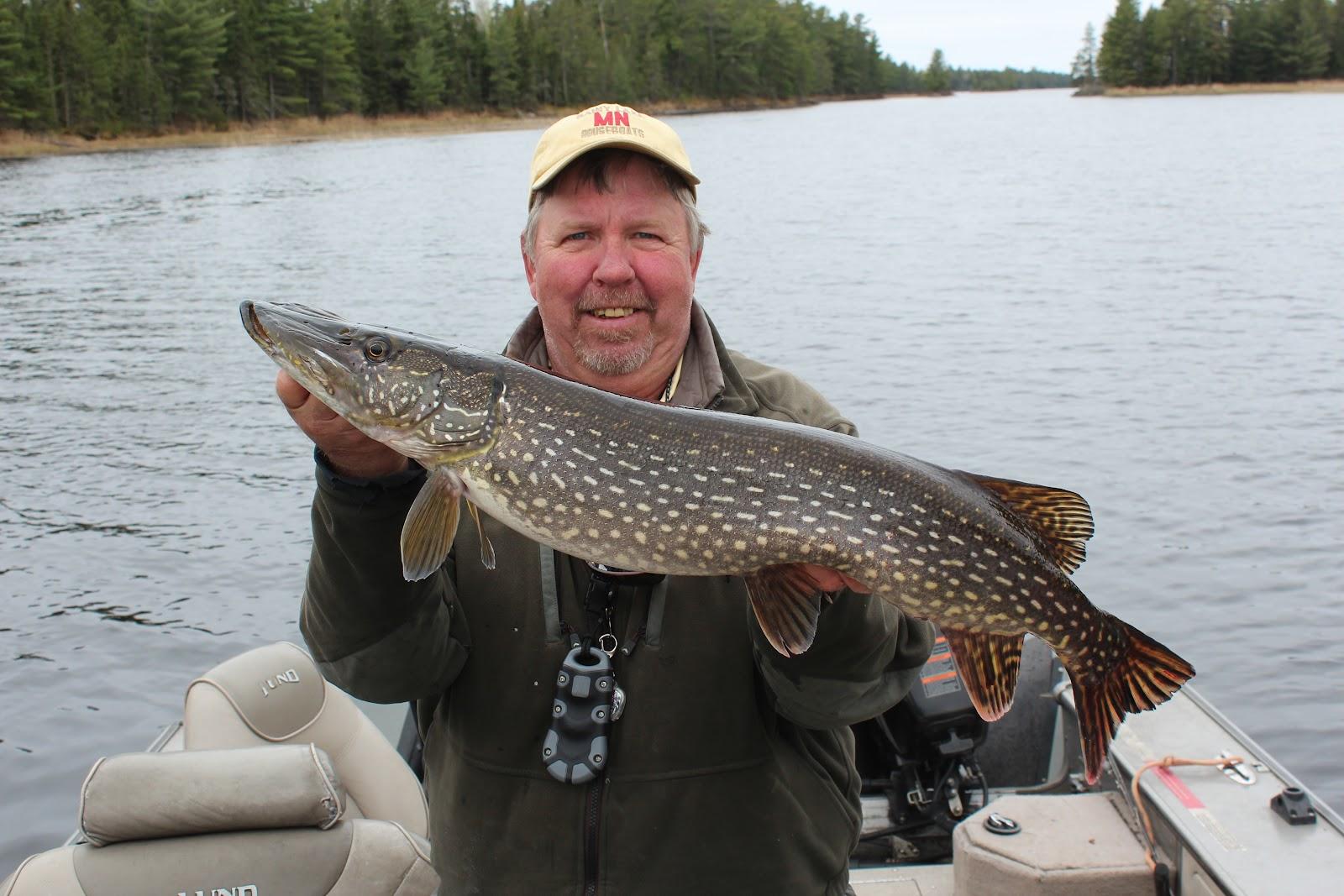 Rainy lake houseboats fishing report hot fishing you are for Rainy lake fishing report