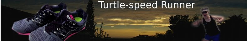 Turtle-speed Runner