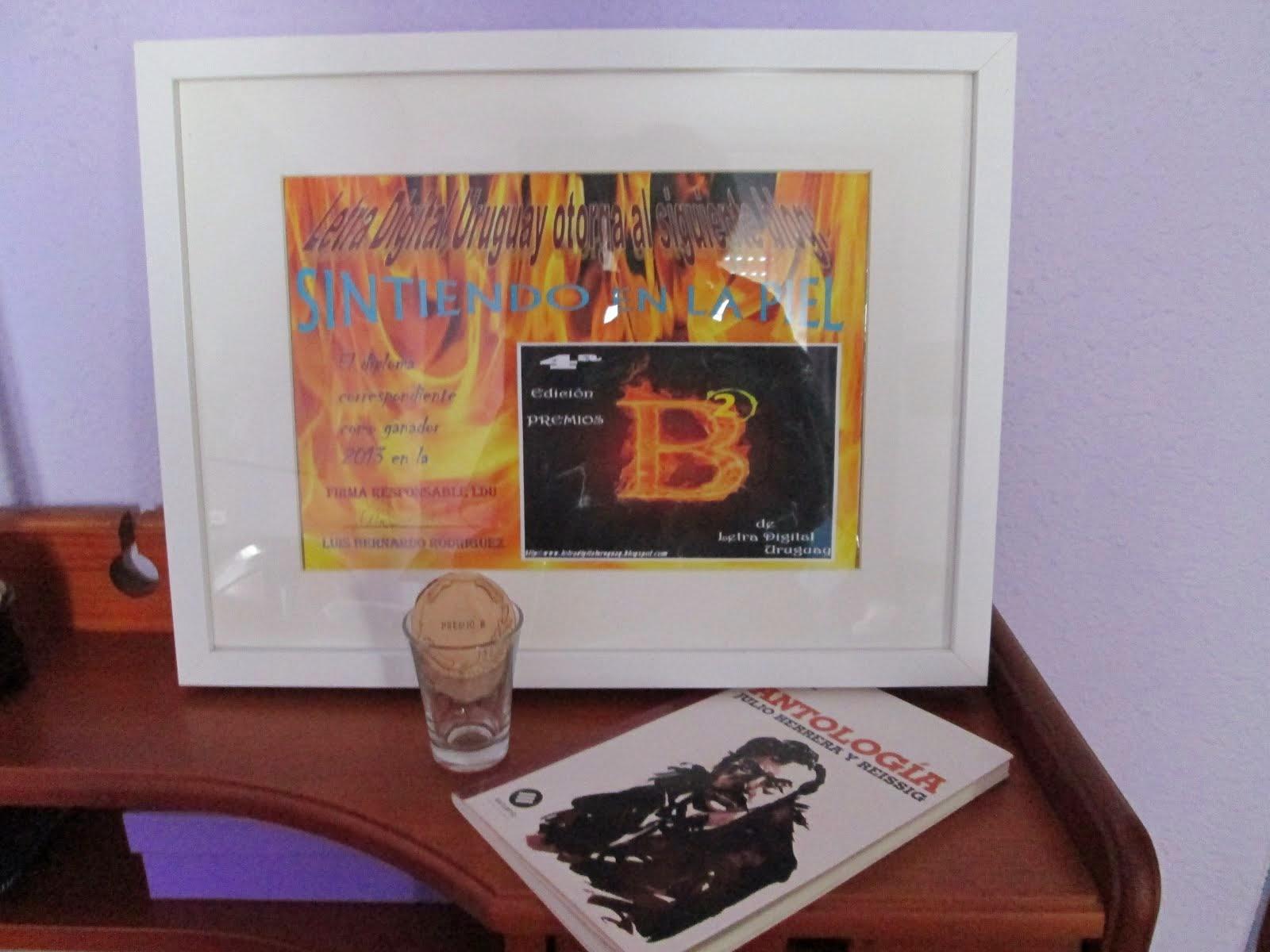 """Premio L D U categoría Blog poético 2014 otorgado a """" Sintiendo en la piel """""""