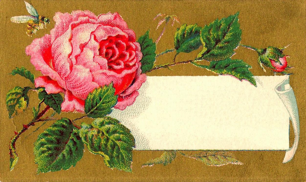 rose flowers digital design - photo #25