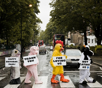 Пол Маккартни получил приветствие к юбилею от PETA UK