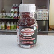 obat herbal untuk asam urat dan kolesterol