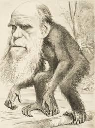 evolusi dan iklim