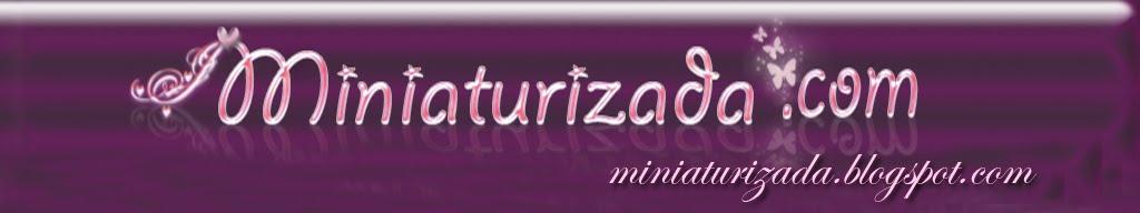Miniaturizada.com
