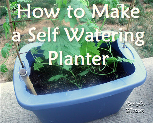 Condo Blues How To Make A Self Watering Planter From A