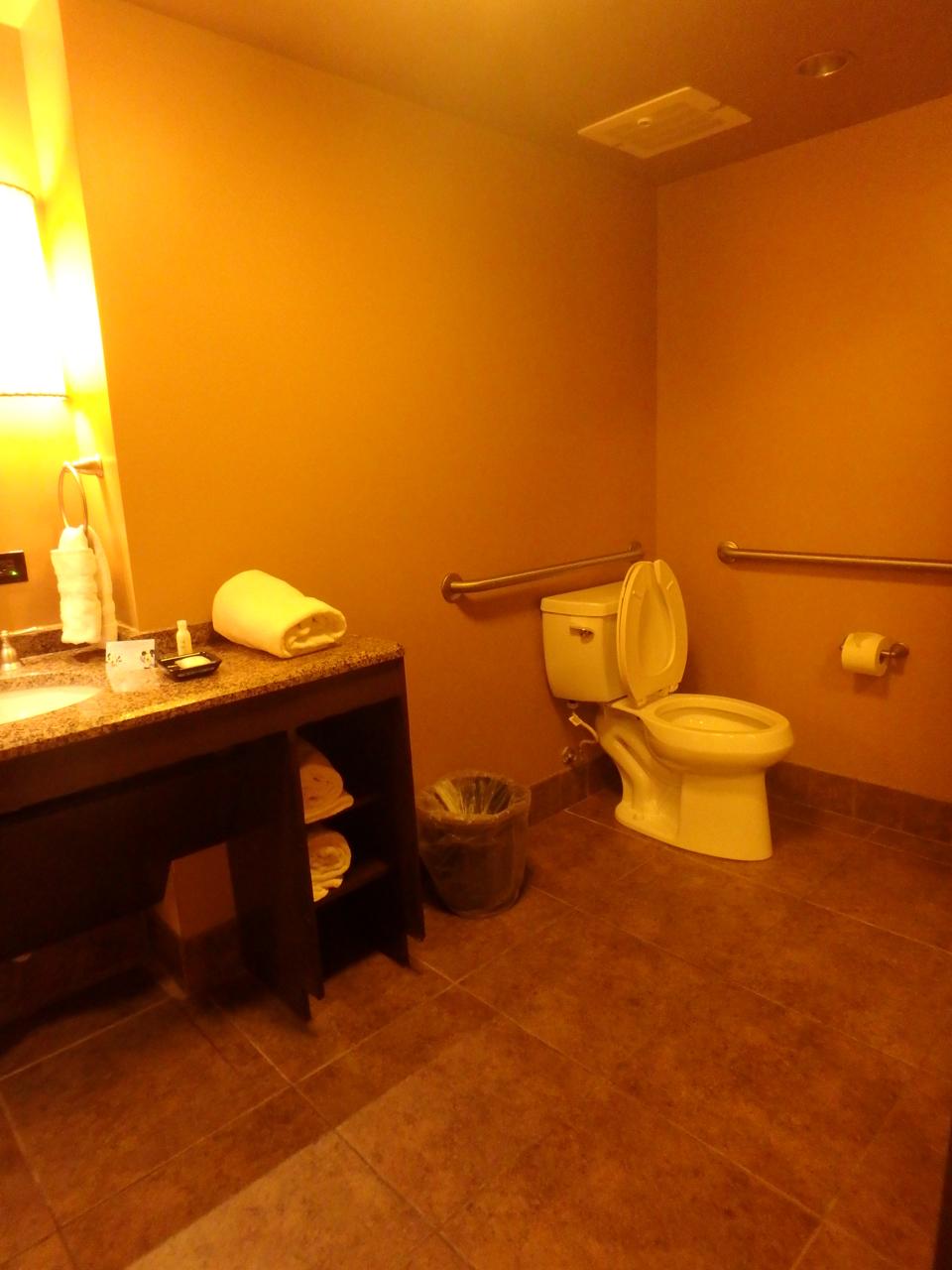 Accessible Bathroom Lock wheelchair travel adventures: walt disney world: animal kingdom