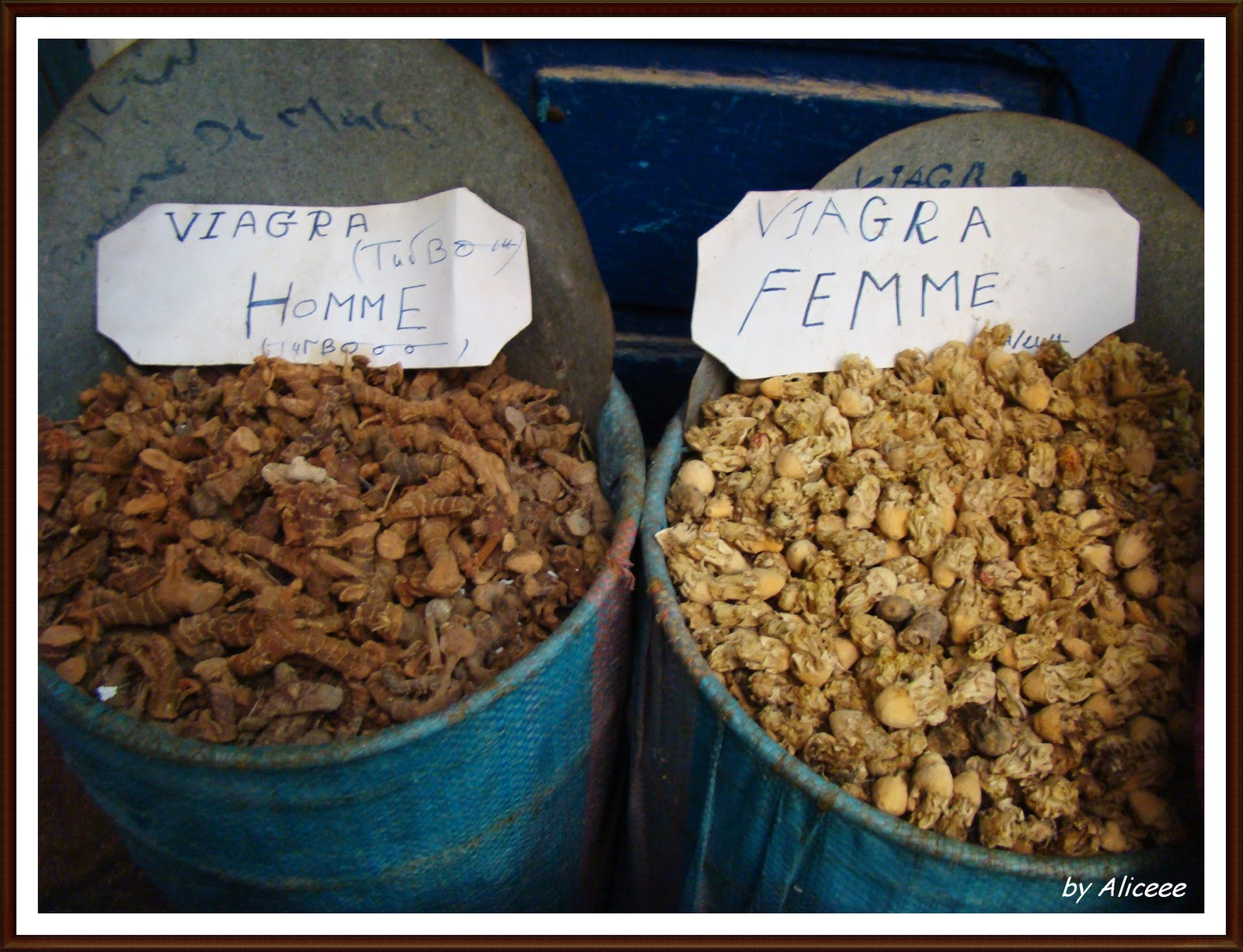 condimente-maroc