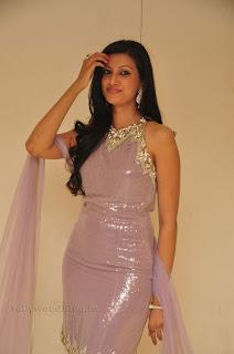 Hasha Nandini pos at cmr aashadam event 012.jpg