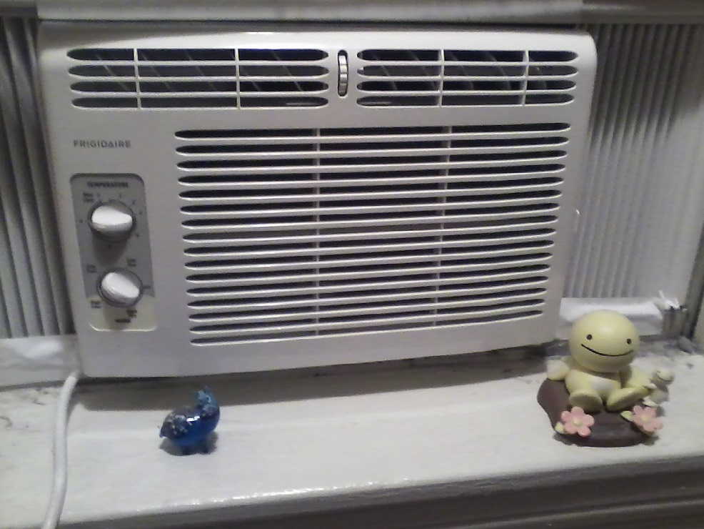 My new Frigidaire window air conditioner with my Sunshine Buddies and