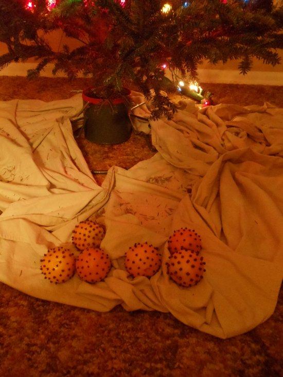 Oranges Under the Tree