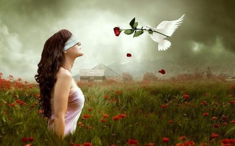 love-is-blind - اكسر مرآة الحب العمياء واختار شريك حياتك بعقلك - الحب اعمى
