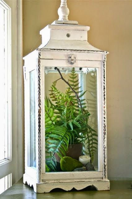 ferns , lantern, spring decor, centrepiece