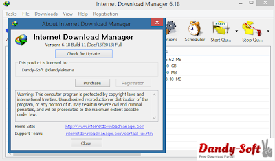 Internet Download Manager 6.18 Build 11 Full Version