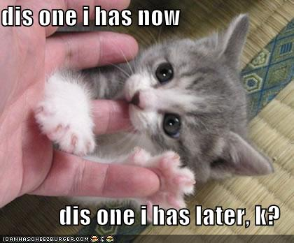 funny images of kittens. kittens. funny cats