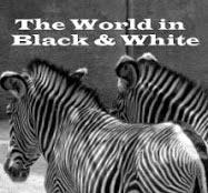 http://theworldinblackwhite.blogspot.com/