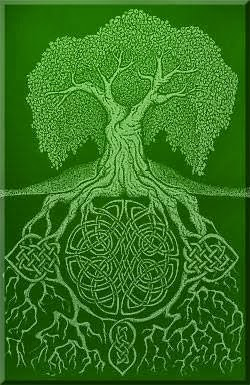 Irish Roots