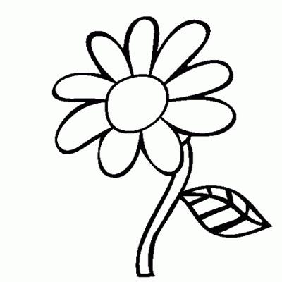 Gambar Bunga Hitam Putih Naturalrugsstore