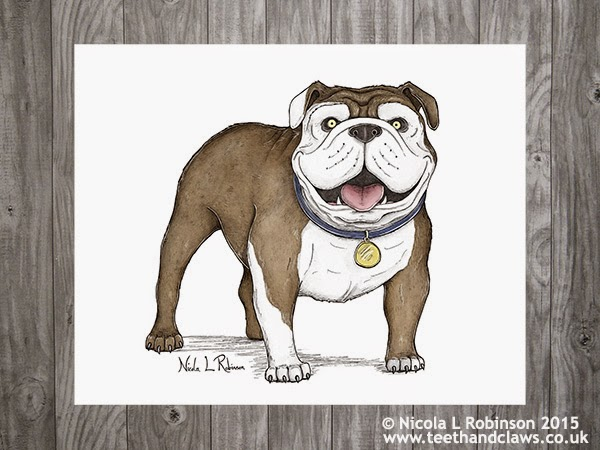 English Bulldog Art © Nicola L Robinson 2015 All rights reserved www.teethandclaws.co.uk