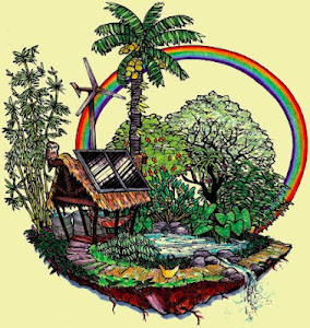 http://vistoenlaweb.wordpress.com/2012/09/08/biblioteca-online-completa-sobre-permacultura-bioconst