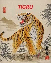 Horoscop Tigru 2015