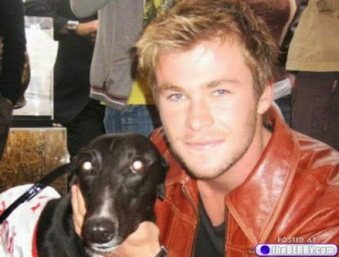 chris hemsworth with dog