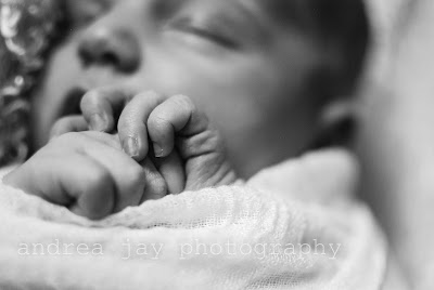 newborn portrail hands