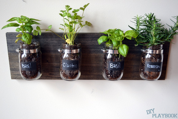 Mason jar organizers can be used for an herb garden.