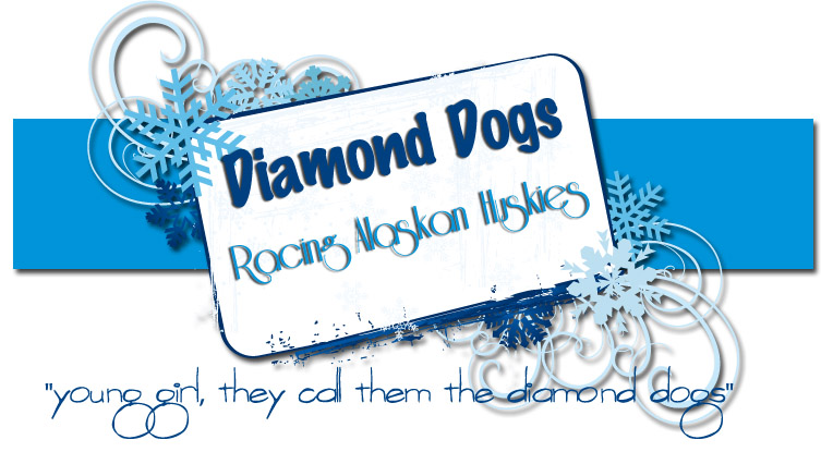 Diamond Dogs Racing Kennel