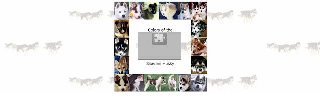 Portada Web de Husky Colors