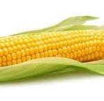 Fish Corn Porridge