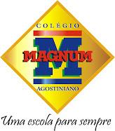COLÉGIO MAGNUM AGOSTINIANO