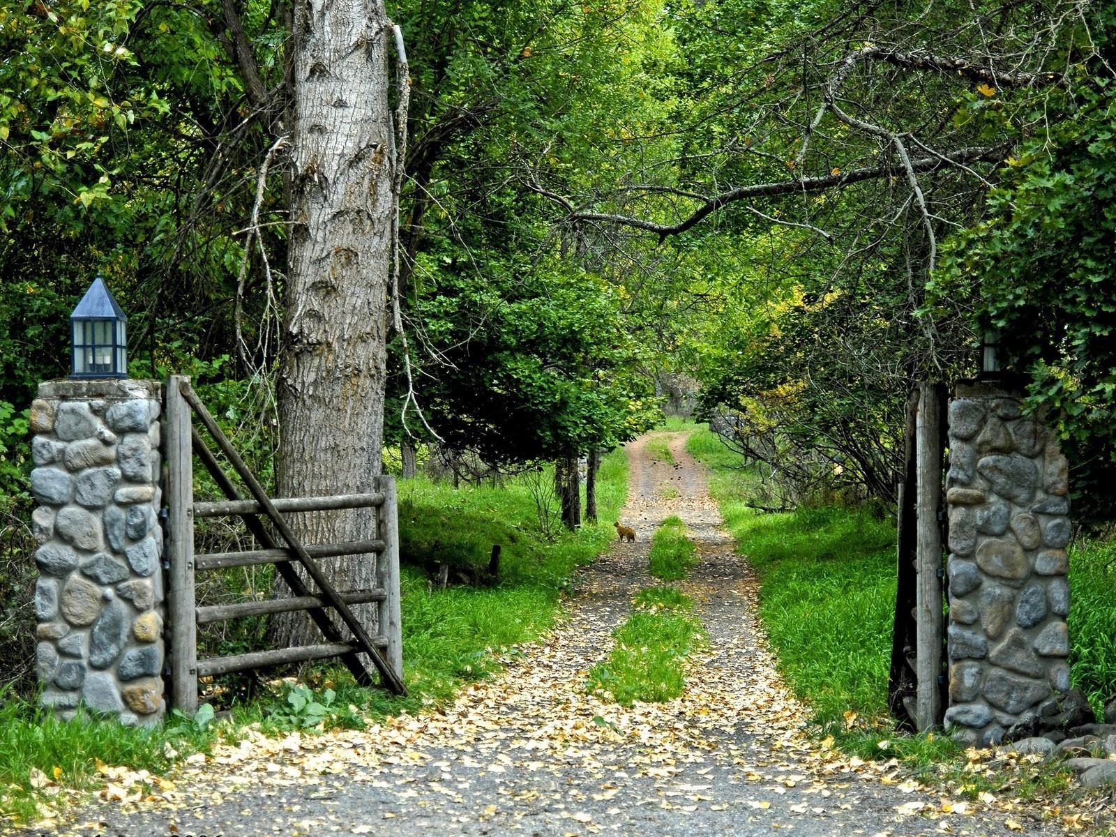 http://3.bp.blogspot.com/-eI9W10ZFkOU/T_jmGQ5fivI/AAAAAAAAAJ0/5s2h09n-h7s/s1600/green-garden-beautiful-hd-images-for-laptop-widescreen.jpg