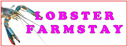 LOBSTER FARMSTAY
