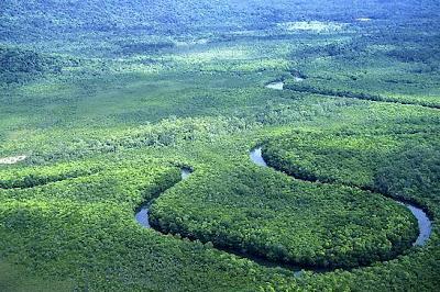 Кэрнс парки, тропический рай на земле отзывы