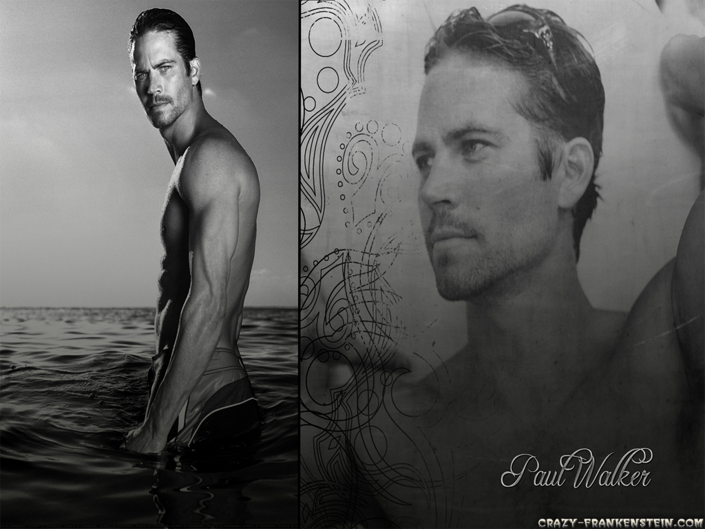 http://3.bp.blogspot.com/-eIVFwnbFFV4/TaxoNjmPD3I/AAAAAAAAEAM/DhYhF2f_YoU/s1600/paul-walker-male-celebrity-wallpapers-2-1024x768.jpg
