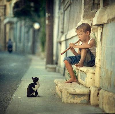 Flauta, Criança, Gato, Tocador de Flauta,