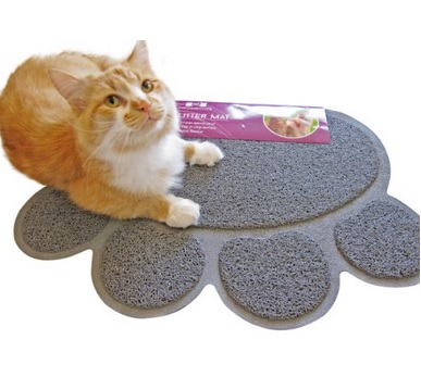 Temporary Cat Litter