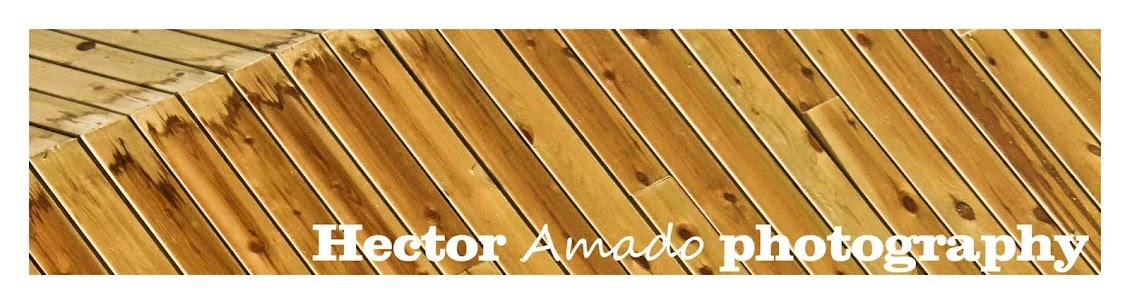 Hector Amado Photografhy