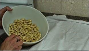almond blanch