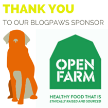 We Attended the 2016 BlogPaws Conference in Phoenix!
