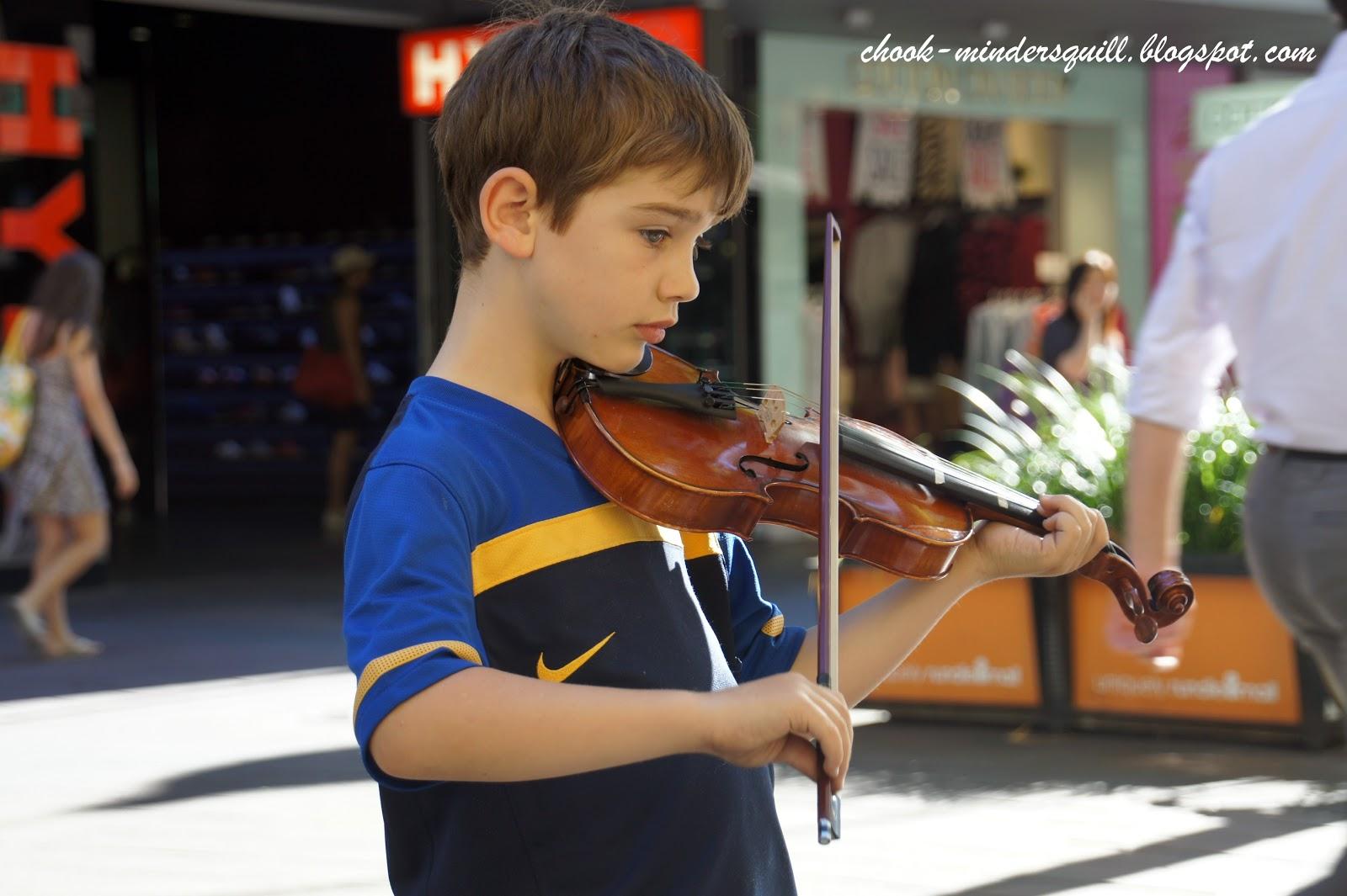 The chook minder 39 s quill violino piccolo - Volpino piccolo ...
