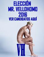 Elección de Mr. VH 2016
