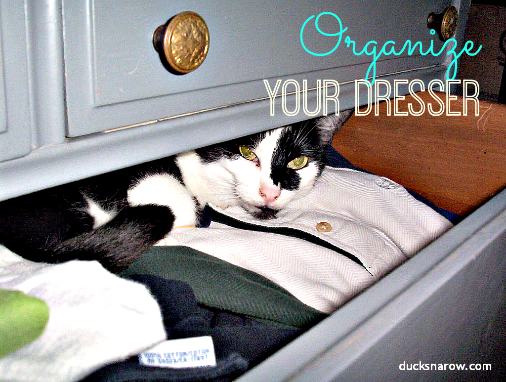 Organize your dresser drawers! #organize #dresser #cat #drawer Ducks 'n a Row