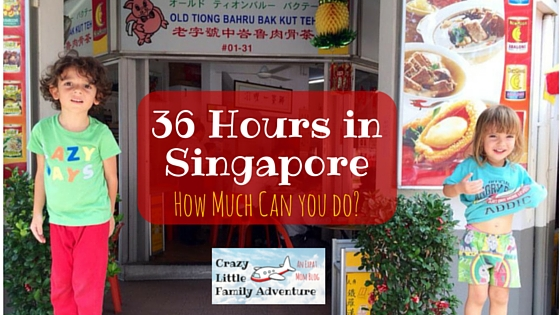 How to Tackle Singapore in 36 Hours! See what we did and you can a great time in Singapore in a short period of time.