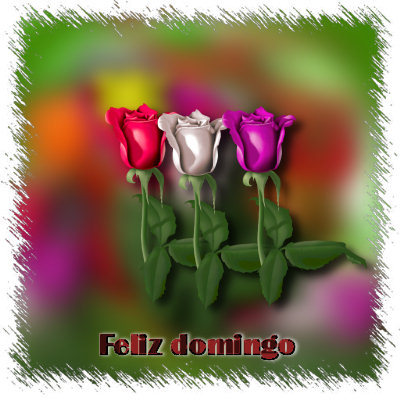 imagenes de feliz domingo flores