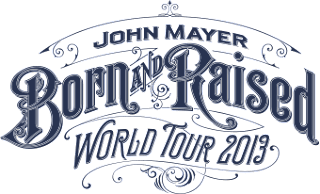 John Mayer Concert Tour 2013