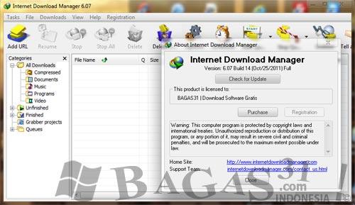 Internet Download Manager 6.07 Build 14 2