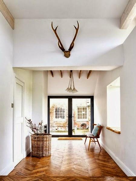 Poroże jelenia w holu
